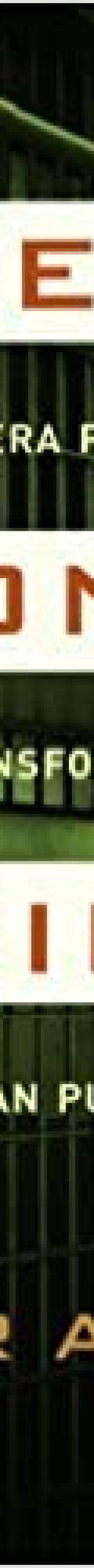 51-bPzi36JL._SX331_BO1,204,203,200_